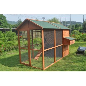 Chicken Coop (WP001M)